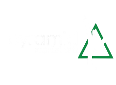 Welcome To Pyramid Martial Arts